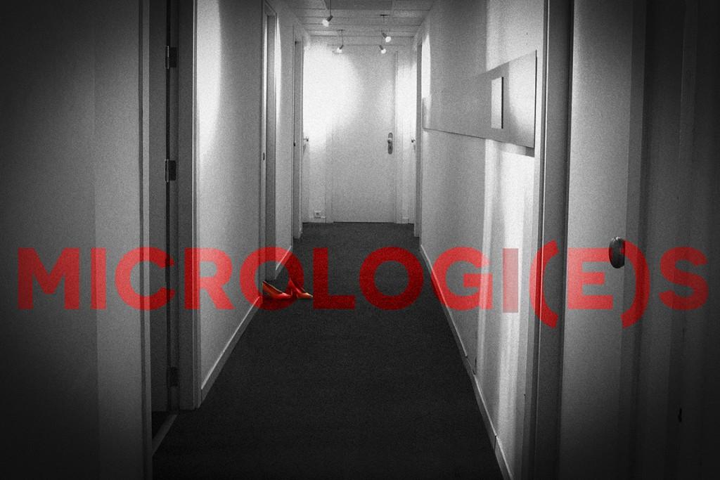 Visuel Micrologies